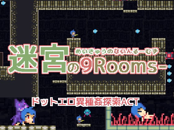 Labyrinth of 9 Rooms